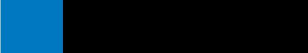 NetApp Logo - Black sans-serif type with blue icon to left